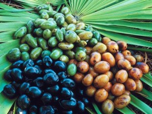 Saw Palmetto Liquid